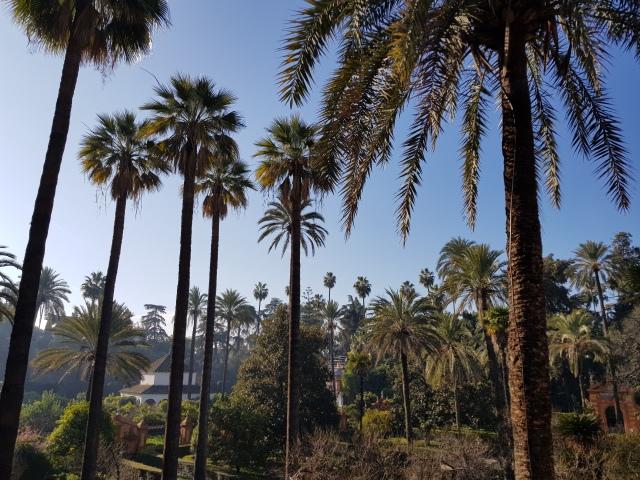 Jardins du Real Alcazar 1 - © Thia