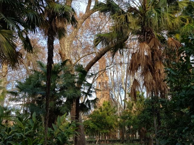 Parque de Maria Luisa 1 - Vue sur une des tours de la Plaza de Espana - © Thia
